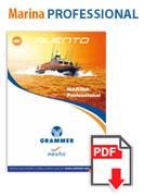 professional_pdf